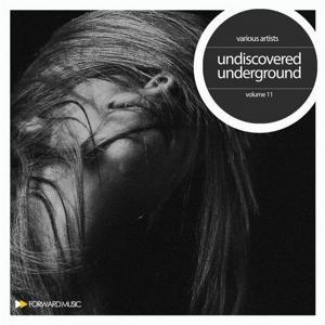 VA - Undiscovered Underground, Vol. 11 [AIFF]