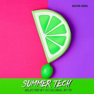 VA - Summer Tech [DRL043]