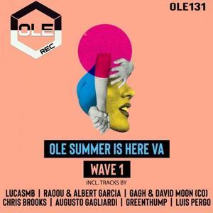 VA - Ole Summer Is Here VA Wave 1 [OLE131]
