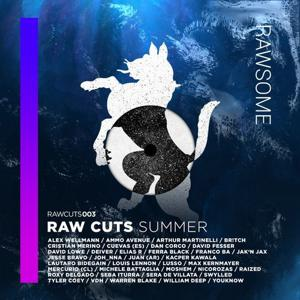 VA - Raw Cuts Summer [Rawsome Recordings]