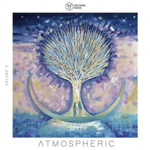 VA - Voltaire Music Pres. Atmospheric, Vol. 8 [2020] [FLAC]