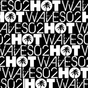 VA - Hot Waves Compilation Volume Two [HWCD002]