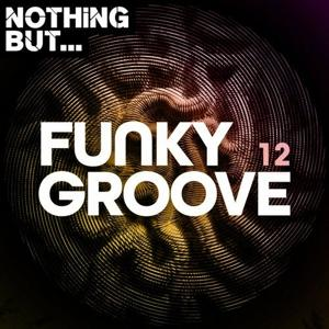 VA - Nothing But... Funky Groove, Vol. 12 - (Nothing But)