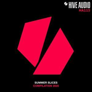 VA - Summer Slices 2020 [HA115] [FLAC]